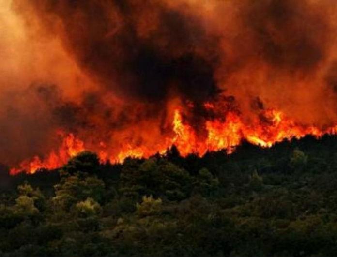 Έκτακτο: Νέα ισχυρή πυρκαγιά ξέσπασε πριν από λίγο στην χώρα!