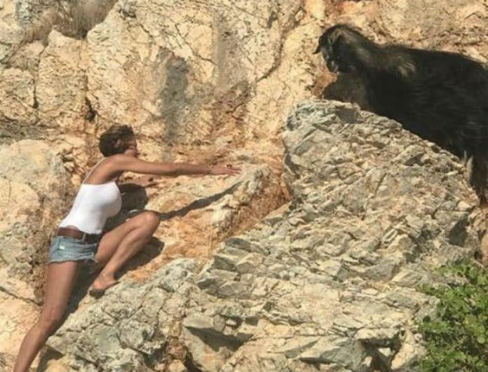Παροξυσμός στο Twitter με την Τζένη Μπαλατσινού και τη...διάσωση της κατσίκας! Ατάκες που θα σας κάνουν να κλάψετε από τα γέλια!