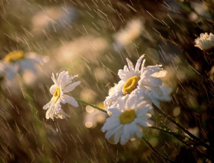Ήλιος με... βροχές σήμερα! Σε ποιες περιοχές έρχονται καταιγίδες;