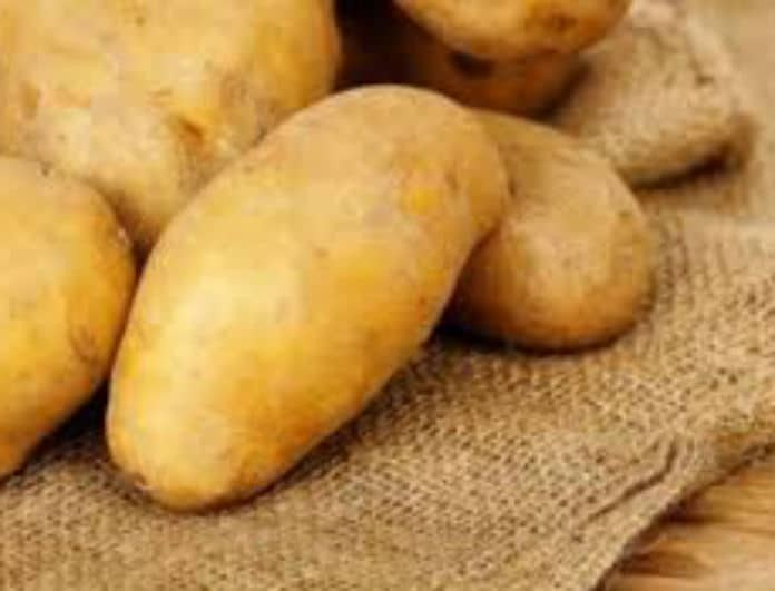 Βάζετε τις πατάτες στο ψυγείο; Με αυτό τον λόγο θα τις βγάλετε αμέσως!