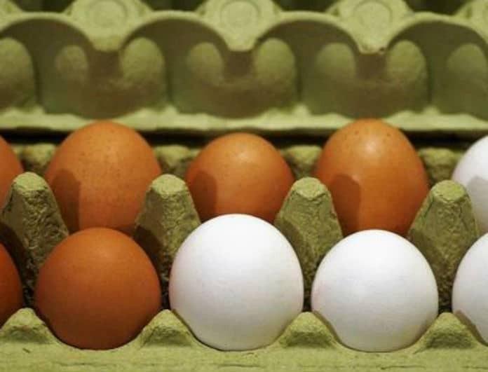 Αυτό το γνώριζες; Ποια είναι η διαφορά μεταξύ των λευκών και των καφέ αυγών!