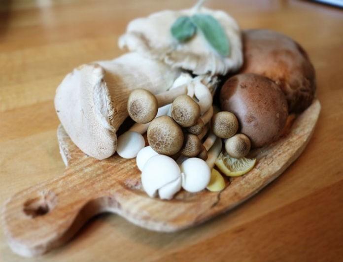 Τα οφέλη των μανιταριών! 5 σοβαροί λόγοι για να τα προτιμήσετε!
