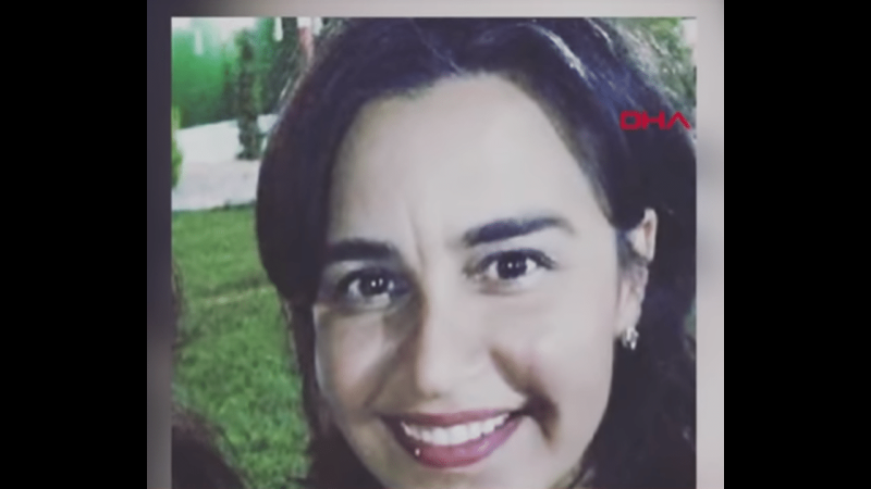 Επαγγελματίας δολοφόνος ερωτεύεται γυναίκα που τον προσέλαβε για να την σκοτώσει