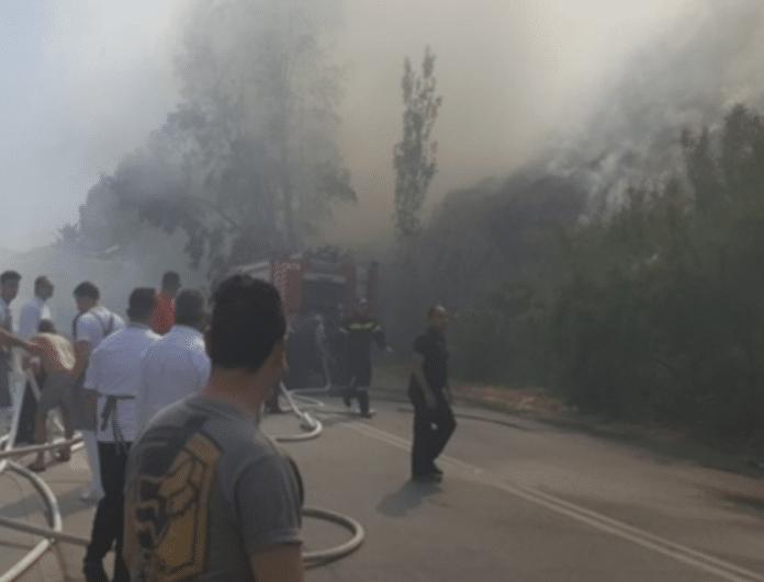 Ρόδος: Μεγάλη φωτιά κοντά σε τουριστική περιοχή!