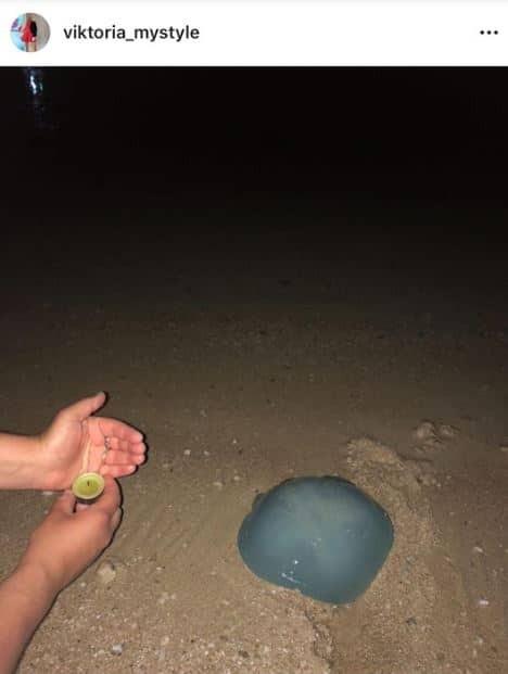 Βικτώρια Καρύδα: Στην παραλία με τα παιδιά της! Άφησαν κεράκια στο νερό στη μνήμη του Γιάννη Μακρή...