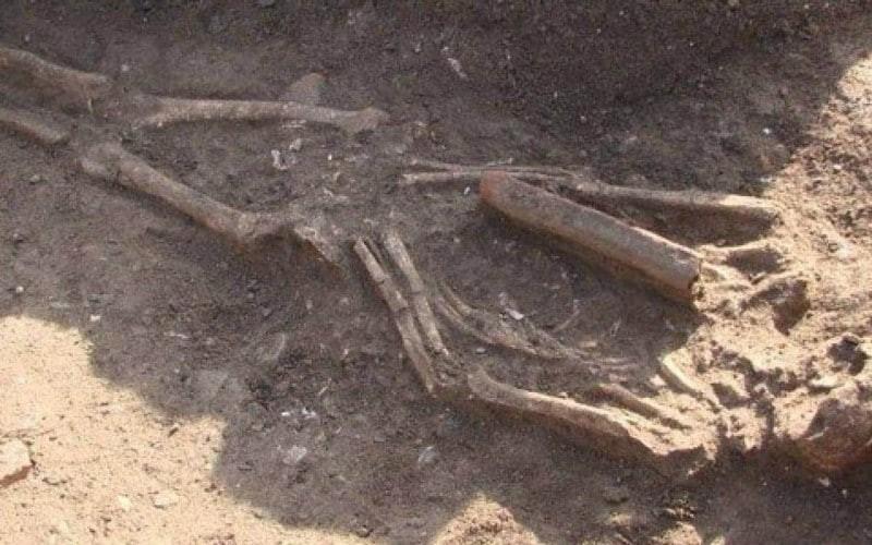 Ανατριχίλα στην Εύβοια! Βρέθηκε ανθρώπινος σκελετός!