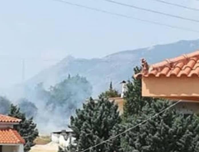 Πυρκαγιά στα Ίσθμια της Κορίνθου: Μια «ανάσα» από τα σπίτια! (Βίντεο)