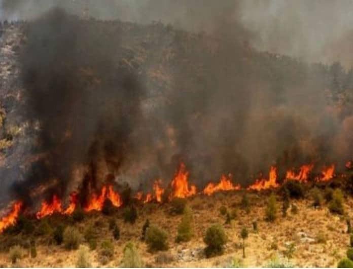 Φωτιές σε Ασπρόπυργο και Ελευσίνα!