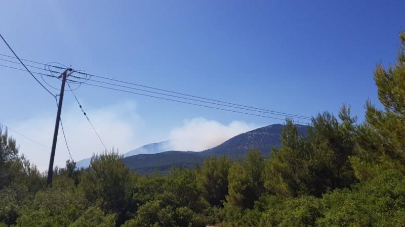 Φωτιά στον Κιθαιρώνα - Δύσκολη η επιχείρηση κατάσβεσης!