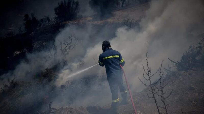 Μεγάλη φωτιά στην Εύβοια! Καίει δασική περιοχή!