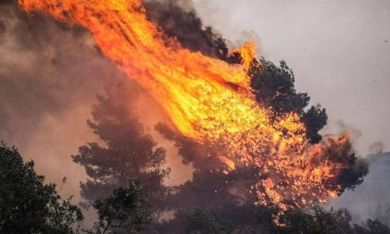 Πύρινη λαίλαπα στη Θάσο: Απειλούνται σπίτια!