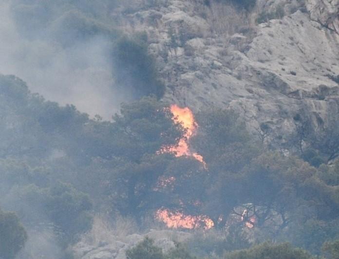 Νέα συμφορά στη Χαλκιδική: Μετά τη φονική θεομηνία ήρθαν οι πυρκαγιές!