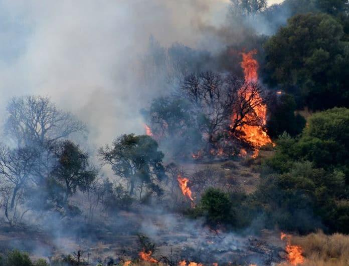 Έκτακτο: Στις φλόγες χωριό στην Εύβοια! Αγωνία για κατοίκους που έμειναν πίσω!