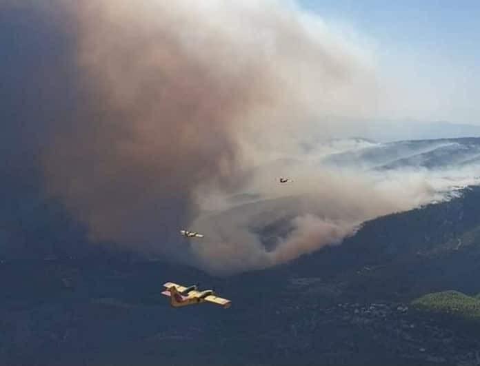 Φωτιά Εύβοια: Στα 11,5 χιλιόμετρα το μέτωπο της πυρκαγιάς - 64χρονος αναζητείται από την αστυνομία!