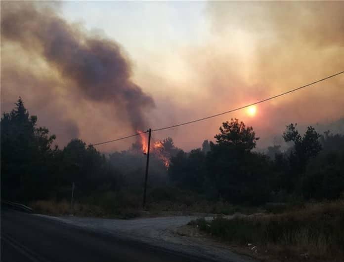 Φωτιά στην Σάμο: «Παλεύουν» με τις φλόγες! 5 ξενοδοχεία εκκενώθηκαν συνολικά!