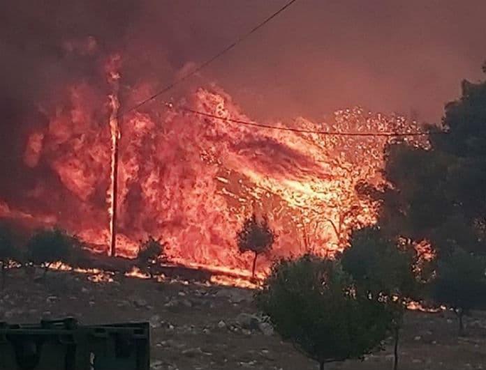Φωτιά στην Ζάκυνθο: Ολονύχτια μάχη με τις φλόγες θα δώσουν οι Πυροσβέστες!