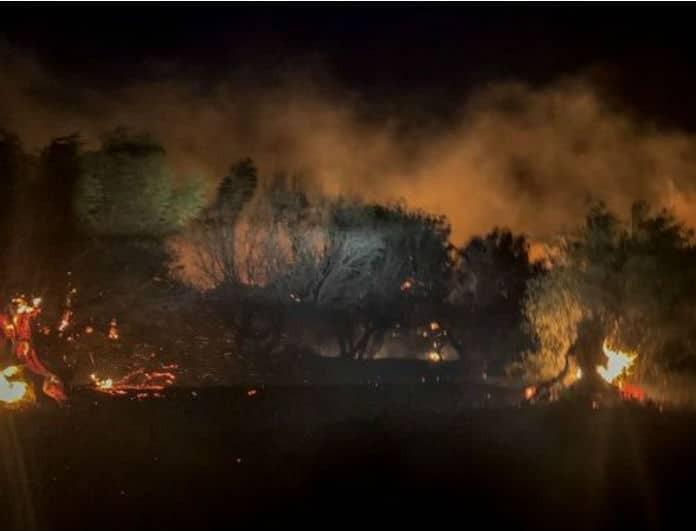Ραγδαίες εξελίξεις στην φωτιά στο Πόρτο Ράφτη! Απομακρύνθηκαν κάτοικοι από την περιοχή και κινδύνευσαν σπίτια!
