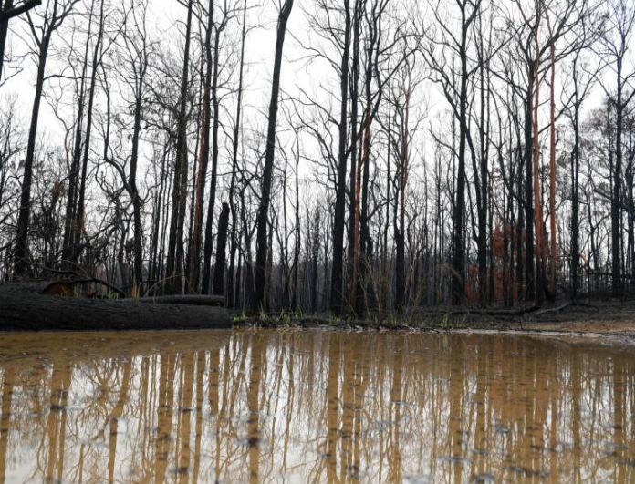 Αυστραλία: Ανάσα ζωής με τις καταιγίδες! Έσβησε μεγάλο μέρος της φωτιάς!