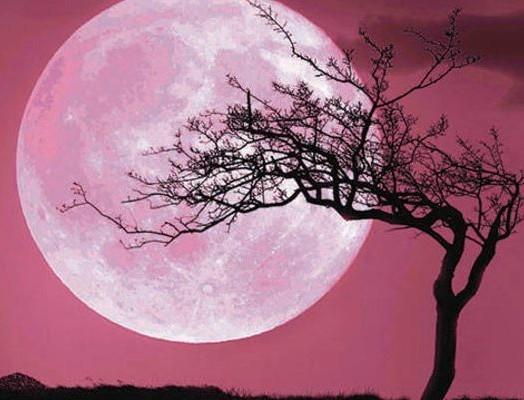 Ροζ πανσέληνος: Απόψε κοιτάμε ουρανό για την μεγαλύτερη σελήνη του 2020