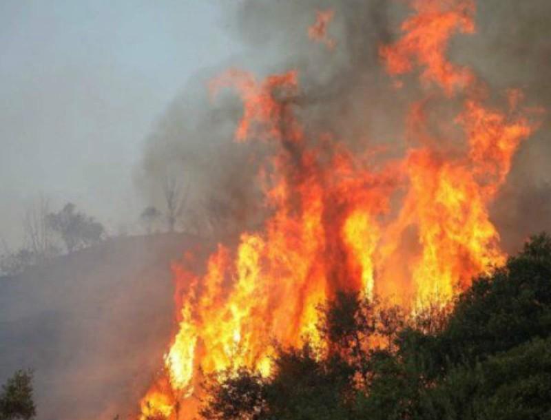 Φωτιά στην Αιτωλοακαρνανία!