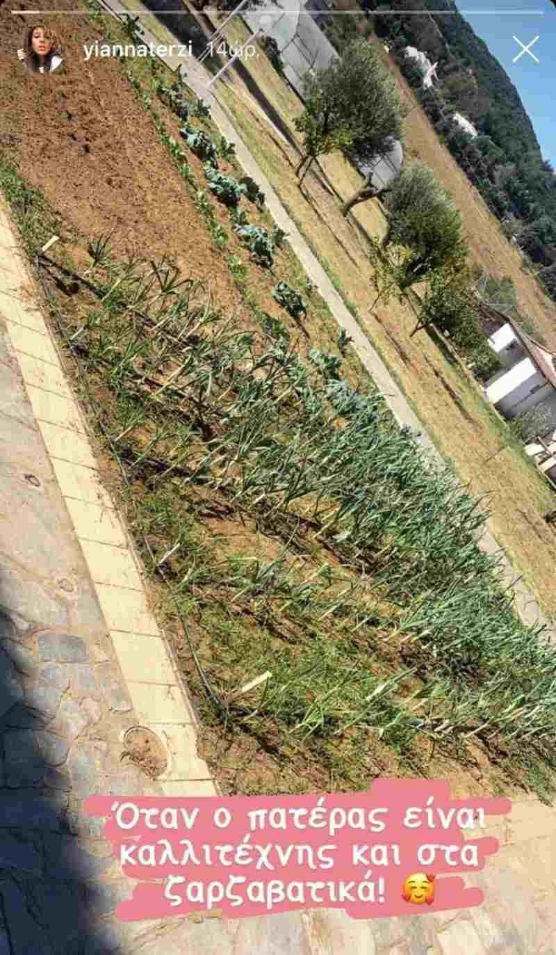 Πασχάλης Τερζής κήπος σπιτιού