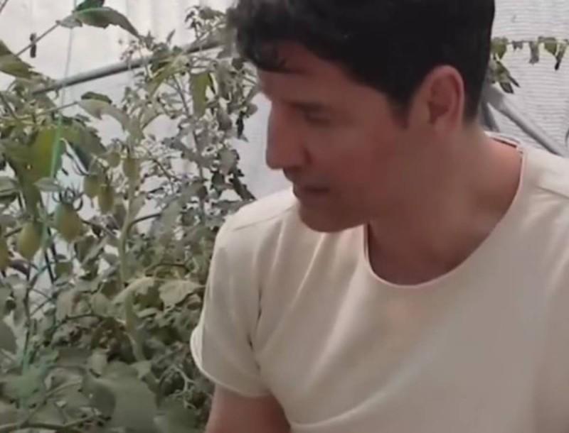 Ολόκληρη... ζούγκλα το μποστάνι που έχουν στο σπίτι τους η Κάτια Ζυγούλη και ο Σάκης Ρουβάς