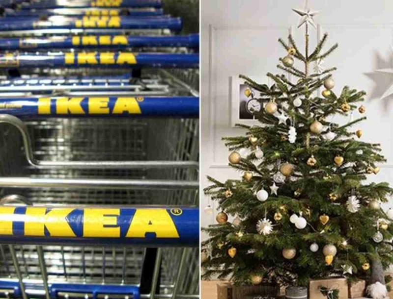 Χριστουγεννιάτικο δέντρο στα IKEA με λιγότερο από 10 ευρώ