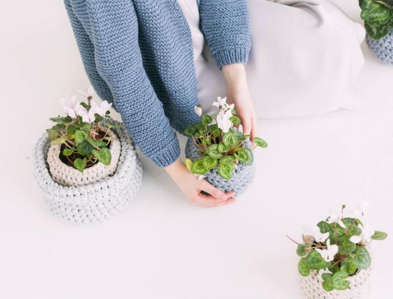 Κορωνοϊός: Αυτό το φυτό εσωτερικού χώρου κάνει καλό στην υγεία