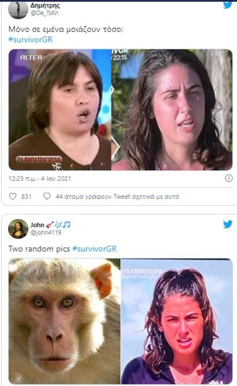 Survivor 4 Twitter