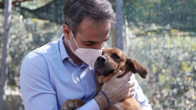 Κυριάκος Μητσοτάκης: Η παράκλησή του για τα ζώα συντροφιάς