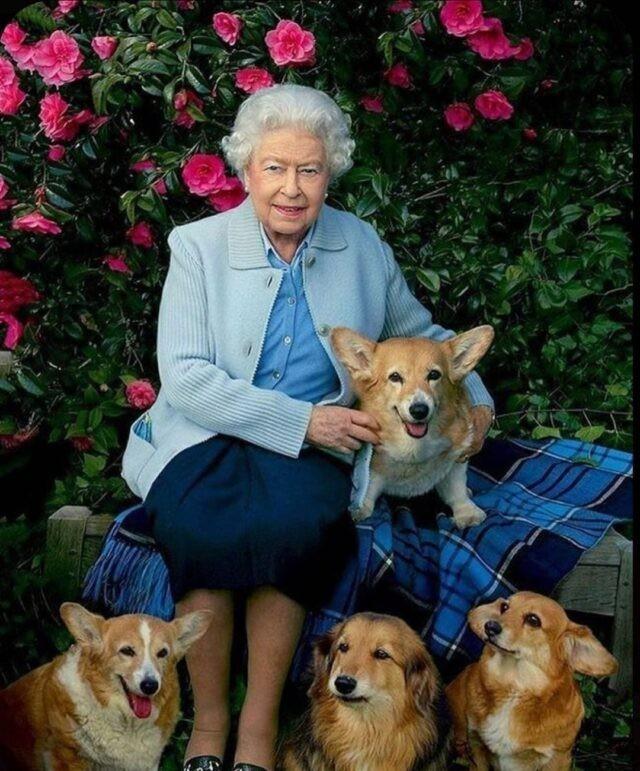 Βασίλισσα Ελισάβετ θάνατος σκύλου