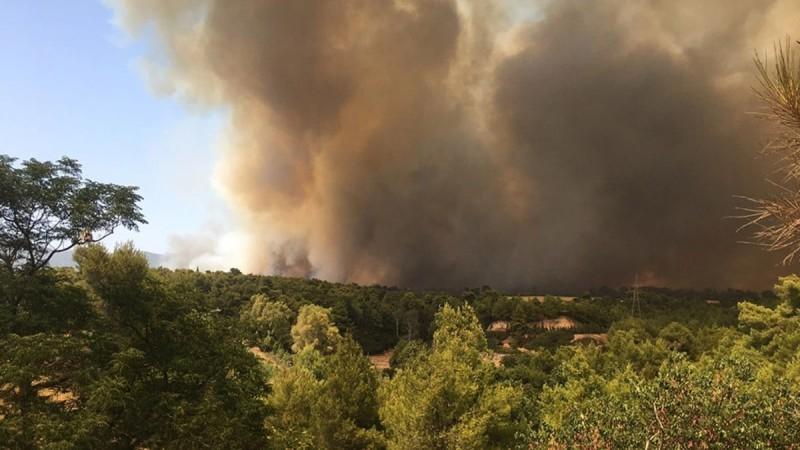 Φωτιά στη Βαρυμπόμπη: Έκλεισε η οδός Αθηνών - Λαμίας