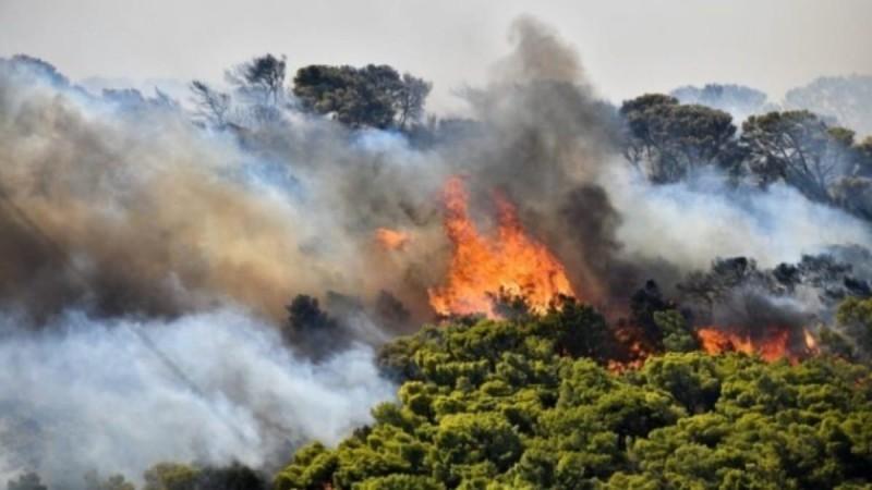 Ρόδος: Μεγάλη φωτιά σε δασική έκταση στην Παντάνασσα