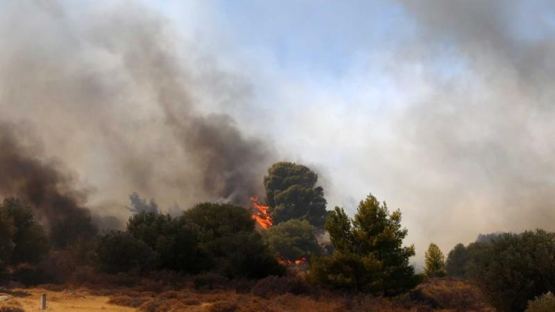 Φωτιά στο Νεστόριο Καστοριάς